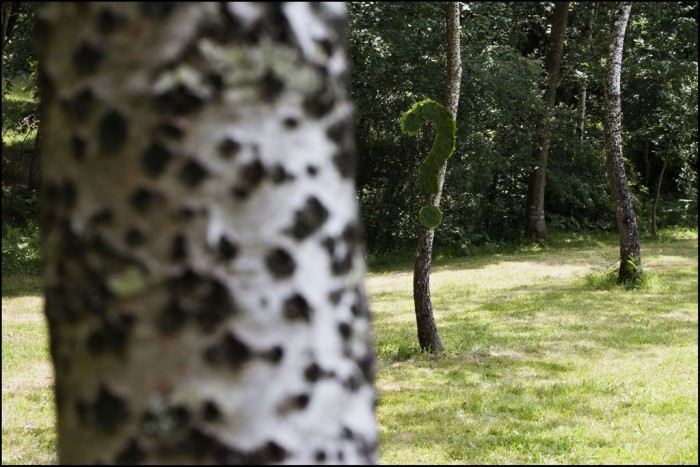 LAND ART 2007 : MONTENEUF CENTRE LES LANDES